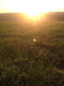 zon kracht